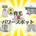【神頼み】育毛にご利益のある神社、パワースポット